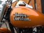 Harley-Davidson Street Bob photo